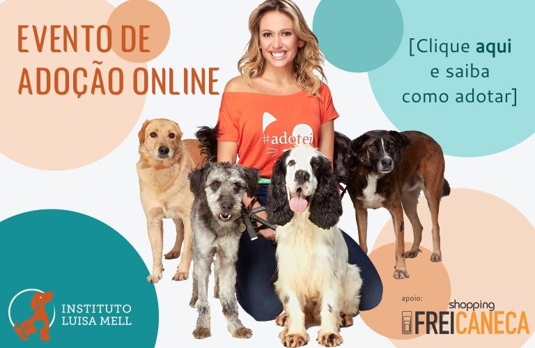 Shopping Frei Caneca apoia evento online de adoção de cães e gatos do Instituto Luisa Mell