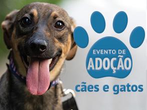 Shopping Frei Caneca realiza evento de adoção com ONG Patinhas Unidas