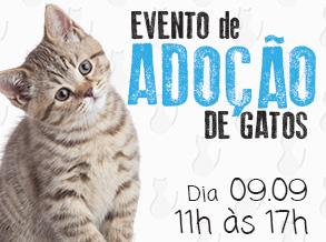 Shopping Frei Caneca realiza Feira de Adoção de Gatos ONG Patinhas Unidas é parceira na ação