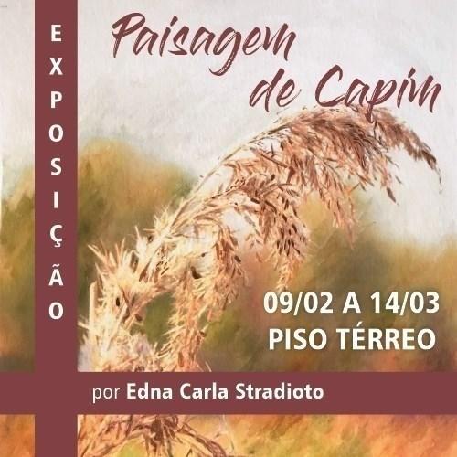 """Shopping Frei Caneca apresenta a exposição """"Paisagem de Capim"""""""
